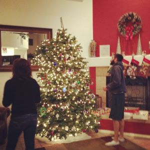 Mom and Alex putting up some ornaments