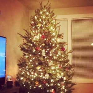 O, Christmas Tree!