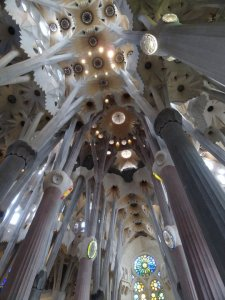 The ceiling inside La Sagrada Familia
