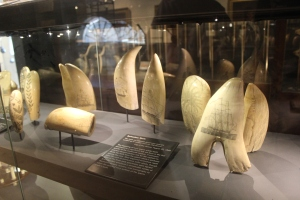 Artwork on whale teeth