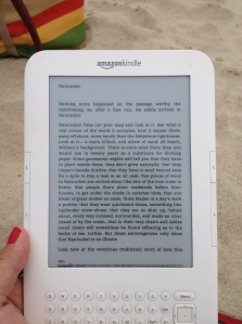 Reading Moby Dick on the beach