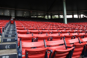 The newer seats at Fenway. The blue seats in the back have been around for generations.