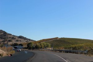 Driving into Napa