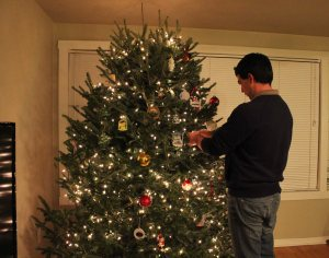 Chip decorating the tree