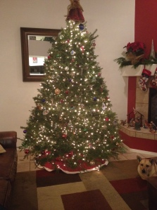 The decorated tree and Penny
