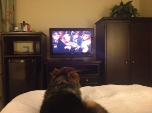 Wrigley enjoying a TV Christmas special in Van Horn