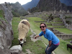 I loved the llamas of Machu PIcchu