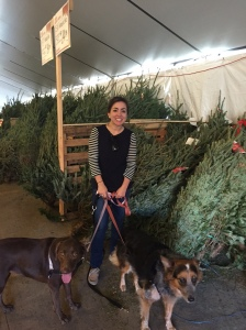 Molly and Wrigley helping us pick a Christmas tree at Home Depot